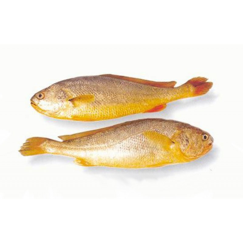 Asian Star Frozen Yellow Croaker Whole Cleaned-1kg...
